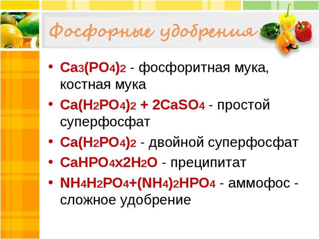 Фосфорные удобрения для весенней подкорми крыжовника