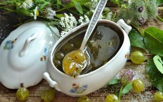 10 лучших рецептов джема из крыжовника на зиму
